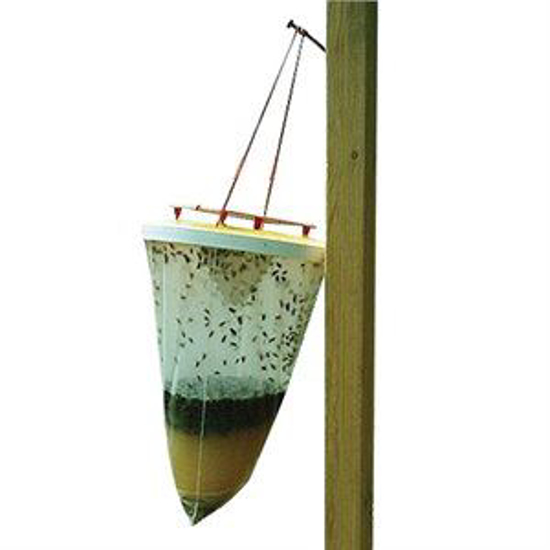 Picture of FLIESbeGONE Non-Toxic Fly Trap